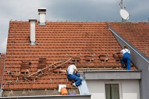 Professional Roof Experts