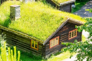 Cabin in a field with a grass roof