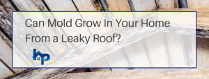 Can a Leaky Roof Cause Mold?